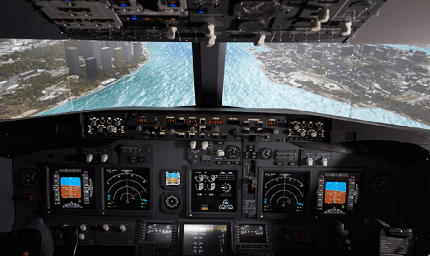 Amateur flight simulators photos 11